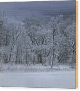 Late Snow At The Rio Grande Wood Print by Ellen Heaverlo