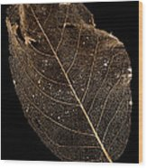 Leaf Lace Wood Print by Anne Gilbert