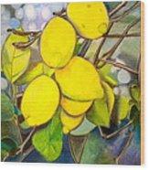 Lemons Wood Print by Debi Starr