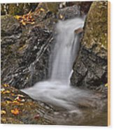 Lepetit Waterfall Wood Print by Susan Candelario