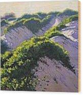 Light Across The Dunes Wood Print by Graham Gercken
