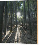 Light At The End Wood Print by Aaron S Bedell