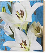 Lilies Against Blue Wall Wood Print by Garry Gay