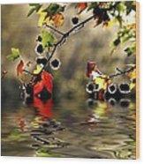 Liquidambar In Flood Wood Print by Avalon Fine Art Photography