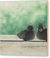 Little Buddies Wood Print by Amy Tyler