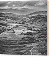 Little Langdale Tarn Wood Print by Alexis Birkill