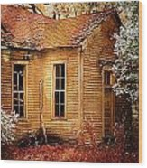 Little Old School House II Wood Print by Julie Dant