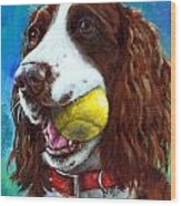 Liver English Springer Spaniel With Tennis Ball Wood Print by Dottie Dracos