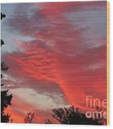Lobster Sky Wood Print by Barbara Griffin