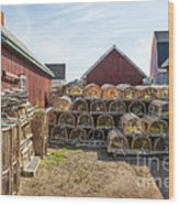 Lobster Traps In North Rustico Wood Print by Elena Elisseeva