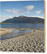 Loch Lomond Pano Wood Print by Jane Rix