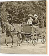 Lone Four Wheel Cart Wood Print by Wayne Sheeler