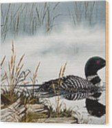 Loons Misty Shore Wood Print by James Williamson