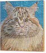 Maine Coon Cat Wood Print by Kathy Marrs Chandler