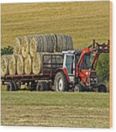 Make Hay When Sun Shines Wood Print by Paul Scoullar