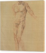 Male Nude 2 Wood Print by Becky Kim