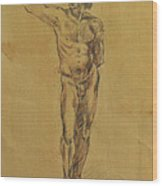 Male Nude 5 Wood Print by Becky Kim
