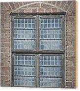 Malmohus Window Wood Print by Antony McAulay