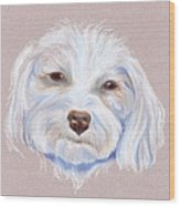 Maltipoo With An Attitude Wood Print by MM Anderson