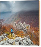 Man And The Mountain Wood Print by Evgeni Dinev