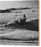 man on snowmobile crossing frozen fields in rural Forget Saskatchewan Canada Wood Print by Joe Fox