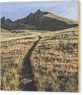 Matterhorn Peak - Colorado Wood Print by Aaron Spong