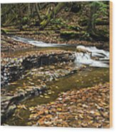 Meandering Waters Wood Print by Christina Rollo