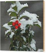 Merry Christmas Wood Print by Raymond Salani III