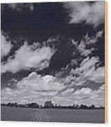 Midwest Corn Field Bw Wood Print by Steve Gadomski