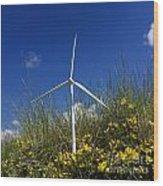 Miniature Wind Turbine In Nature Wood Print by Bernard Jaubert