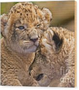 Minor Collision Wood Print by Ashley Vincent