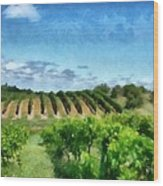 Mission Peninsula Vineyard Ll Wood Print by Michelle Calkins