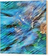 Misty Waters 2 Wood Print by Terril Heilman