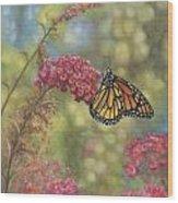 Monarch Butterfly Wood Print by John Zaccheo