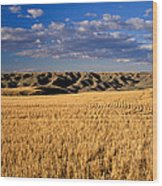Montana   Field And Hills Wood Print by Anonymous