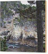Monterey Rock Pines And Cypress Wood Print by Viktor Savchenko