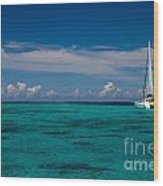 Moorea Lagoon No 16 Wood Print by David Smith