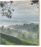 Morning Mist Wood Print by Heiko Koehrer-Wagner