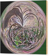 Morphed Art Globe 36 Wood Print by Rhonda Barrett