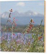 Mountain Wildflowers Wood Print by Juli Scalzi