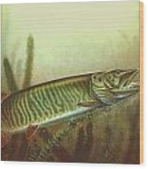 Muskie And Spinner Bait Wood Print by Jon Q Wright