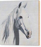 Mustang Mama Wood Print by Jack Atkins