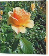 My Love Is Like A Rose Wood Print by Kay Gilley