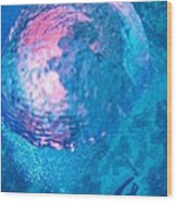 My Reflection In A Divers Bubble Wood Print by John Malone