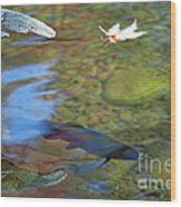 Mystic Waters Wood Print by James Lady
