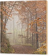 Mystic Woods Wood Print by Anne Gilbert