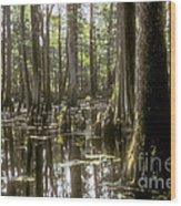 Natchez Trace Wetlands Wood Print by Bob Phillips