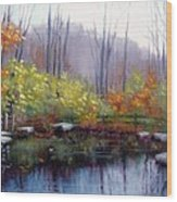 Nature Center Pond At Warner Park In Autumn Wood Print by Janet King