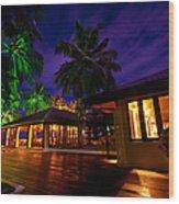Night Lights At The Resort Wood Print by Jenny Rainbow