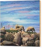Norwegian Sheep Wood Print by Janet King